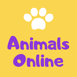 Animals Online