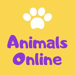 Animals Online